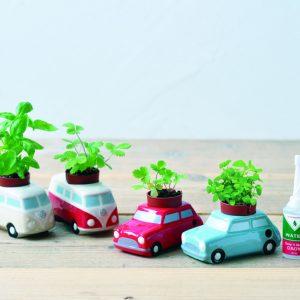 Auto Plants