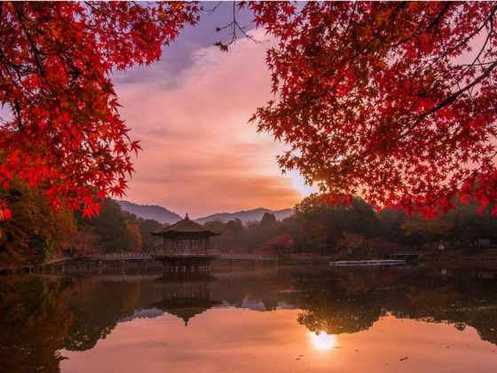 PAST EXHIBITION: THE BEAUTY OF JAPANESE AUTUMN – BY JUNE MIYOSHI