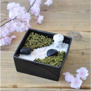Moss Garden Kit