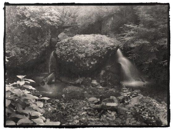CURRENT EXHIBITION: Portrait of Nature Vol.2 – Myriads of Gods – Nobuyuki Kobayashi Photography Exhibition