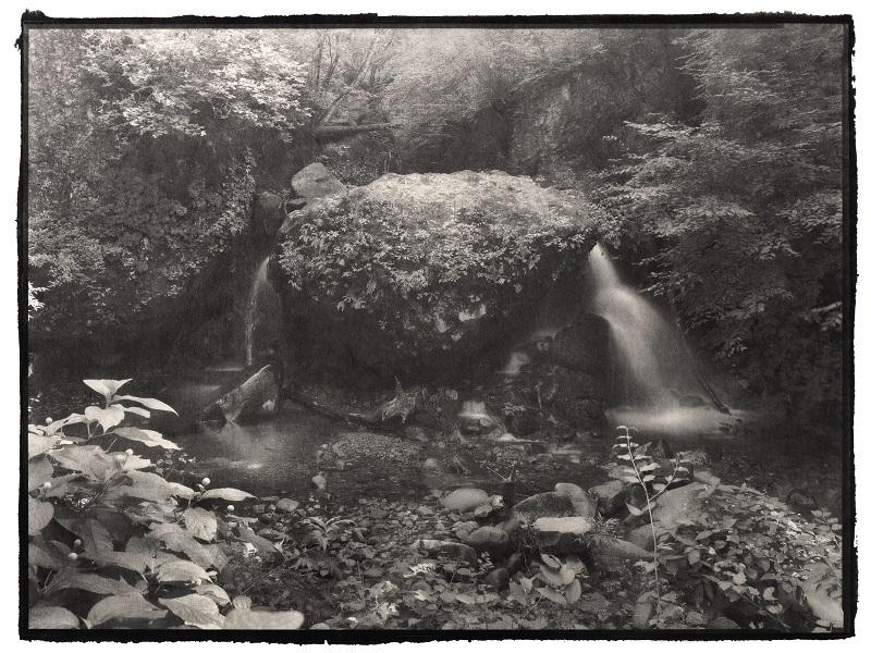 UPCOMING EXHIBITION: Portrait of Nature Vol.2 – Myriads of Gods – Nobuyuki Kobayashi Photography Exhibition